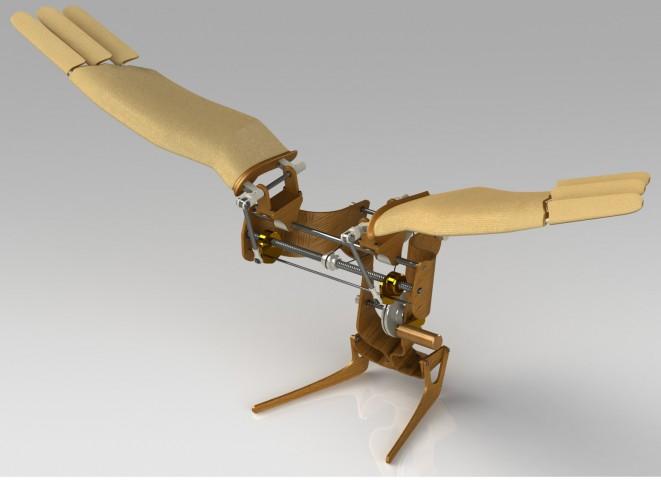 牧園 将大 / Leonardo da Vinci のアイデアをもとにした羽ばたき機械模型 / 竹之内 和樹 准教授